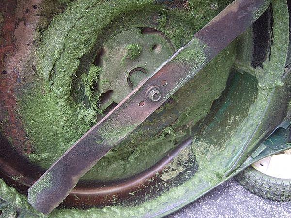 Toro Mower Blades : Choosing a gas driven lawn mower nancy s garden